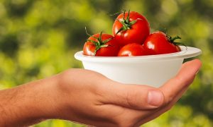 Zdrowa żywność – dla kogo? Bio żywność